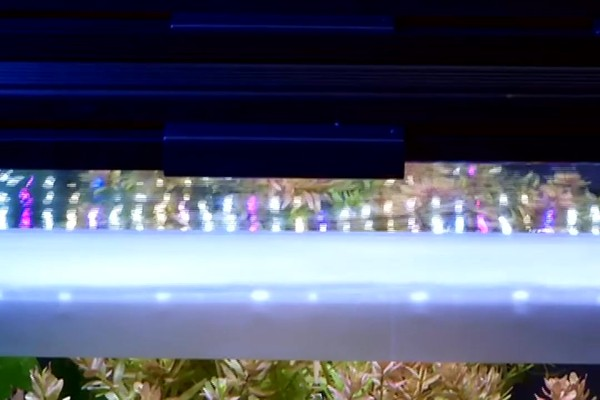 Fluval - led aquarium lighting - image 6 from the video
