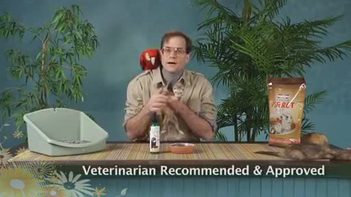 Goodbye Odor by Marshall Pets - image 7 from the video