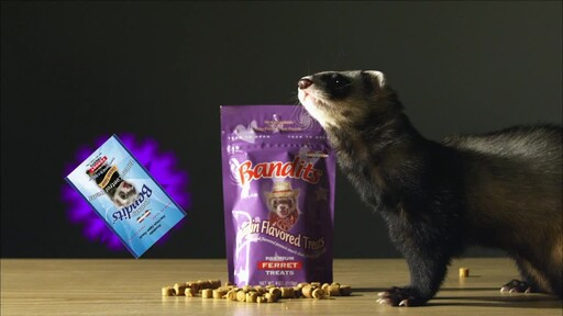 Bandits Ferret Treats  - image 10 from the video