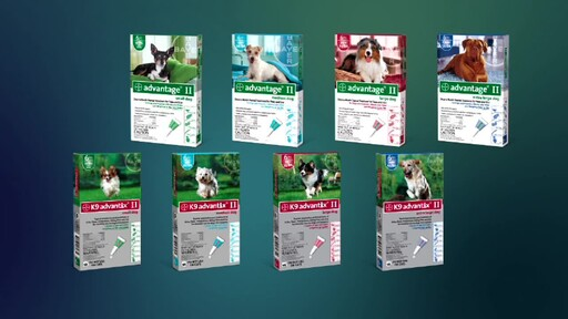 Advantage II and K9 Advantix II for Dogs - image 1 from the video