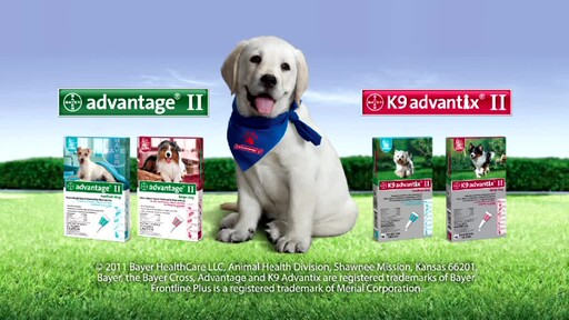 Advantage II and K9 Advantix II for Dogs - image 10 from the video