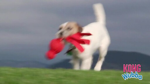 KONG Wubba Dog Toy - image 2 from the video