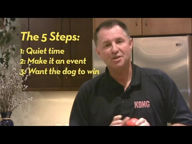 How-to Introduce KONG to Your Dog - image 10 from the video