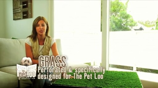 The Pet Loo Indoor Yard Training System - image 1 from the video