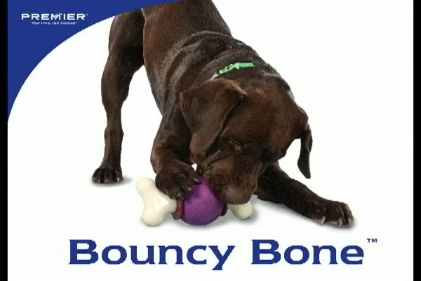Premier Bouncy Bone - image 1 from the video