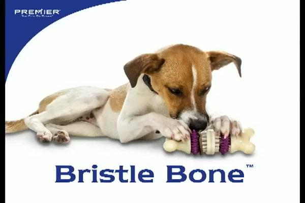Premier Pet Bristle Bone - image 1 from the video