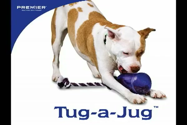 Premier Pet Tug-a-Jug - image 1 from the video