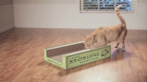 The Original Scratch Lounge - image 1 from the video