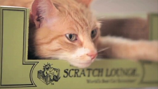 The Original Scratch Lounge - image 10 from the video