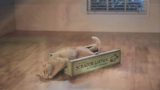The Original Scratch Lounge - image 8 from the video