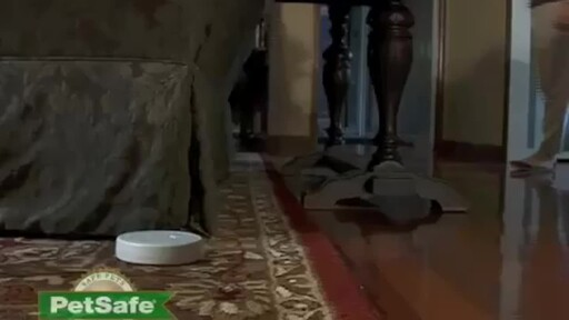 PetSafe Pawz Away Indoor Pet Barrier & Collar - image 7 from the video