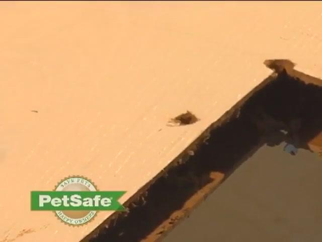 Petsafe Aluminum Pet Door Installation 187 Petco Video