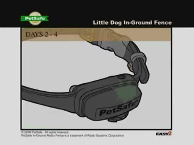 Petsafe Little Dog In Ground Fence 187 Petco Video