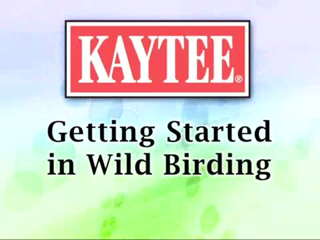 Getting Started in Wild Birding - image 1 from the video