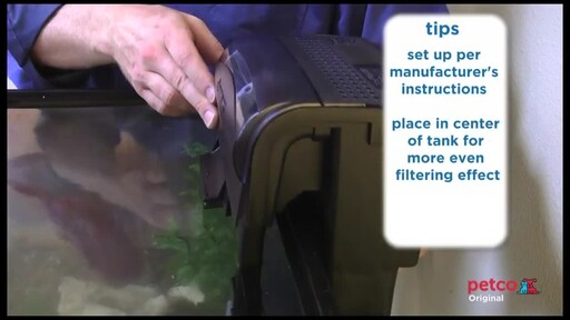 How-to Set Up a Freshwater Aquarium - image 6 from the video