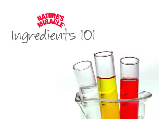 Nature's Miracle Advanced Stain & Odor Remover   - image 3 from the video