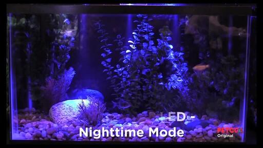 marineland aquarium lights 10 adult sex line over 18