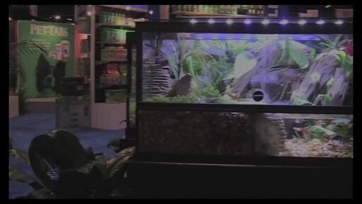 Tetra Viquarium - image 1 from the video