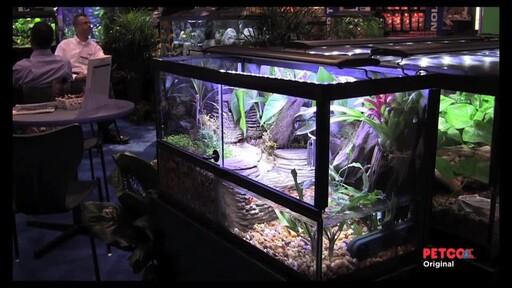 Tetra Viquarium - image 10 from the video