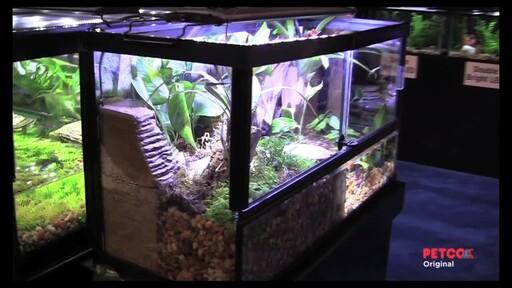 Tetra Viquarium - image 2 from the video