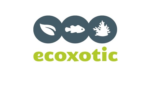 Ecoxotic EcoPico Desktop Fish Aquarium - image 10 from the video