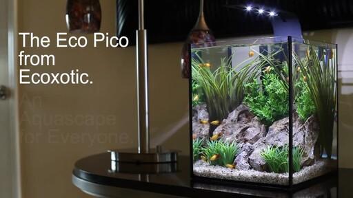 Ecoxotic EcoPico Desktop Fish Aquarium - image 9 from the video
