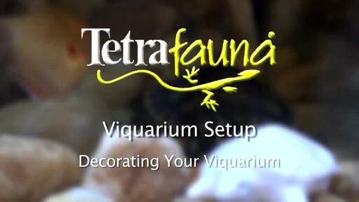 Tetra Viquarium Reptile & Amphibian Terrarium Décor Setup  - image 7 from the video