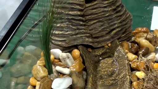 Tetra Viquarium Reptile & Amphibian Terrarium Décor Setup  - image 9 from the video