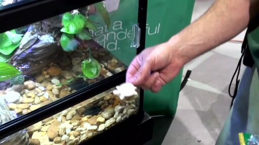 Tetrafauna Food and Water Care Products  - image 9 from the video
