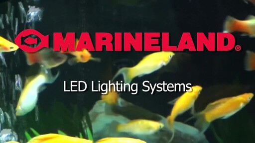 Marineland LED Lighting System - image 1 from the video