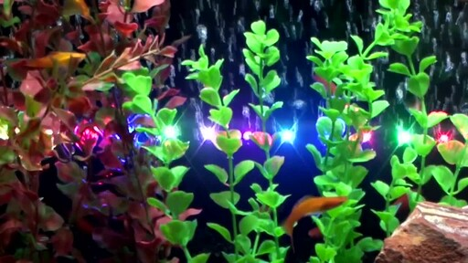 Marineland LED Lighting System - image 2 from the video