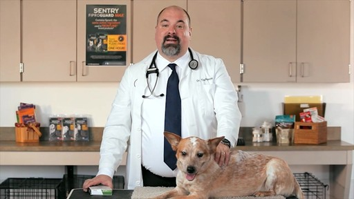 Fiproguardmax - Dr. Tony Johnson - image 4 from the video