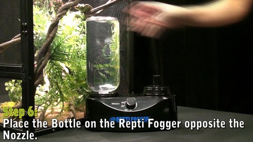Repti Fogger - image 6 from the video