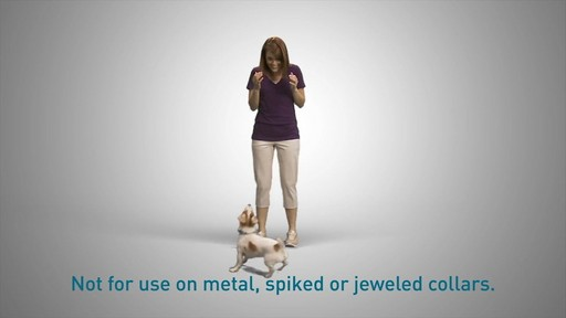 Tagg Pet Tracker - How it works - image 7 from the video