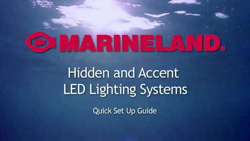 Marineland Hidden And Accent Led Lighting System 187 Petco Video