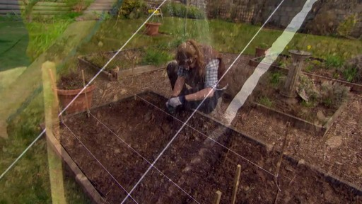 Conseils de jardinage – Le potager - image 8 from the video