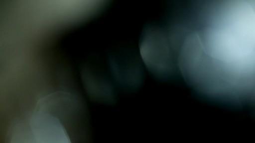 Cat Slicker Brush - image 3 from the video