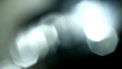 Cat Slicker Brush - image 6 from the video