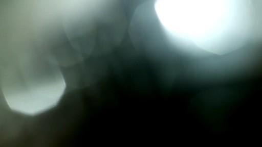 Cat Slicker Brush - image 7 from the video