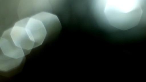 Cat Slicker Brush - image 8 from the video