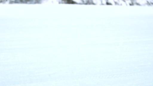 Camionnette - Meilleur de sa catégorie - image 2 from the video