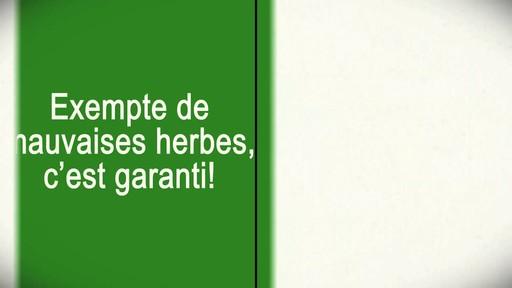 Application de terre à pelouse - image 9 from the video