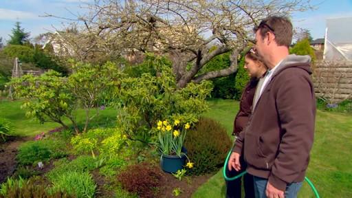 Conseils de jardinage – Conseils d'arrosage  - image 1 from the video