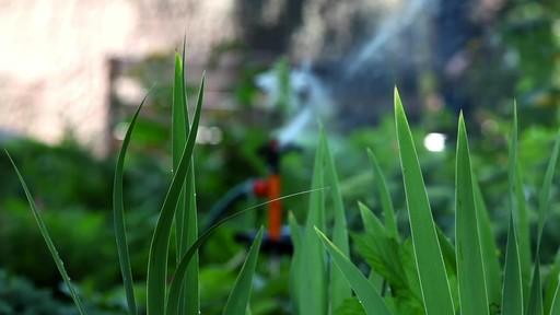 Conseils de jardinage – Conseils d'arrosage  - image 7 from the video