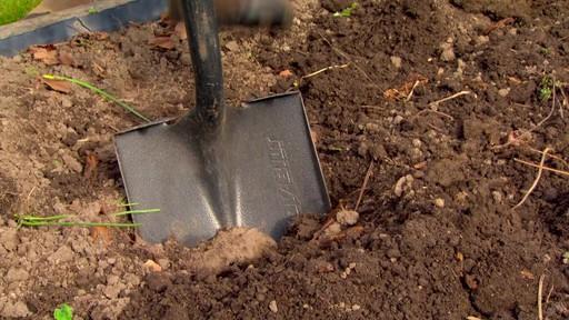 Conseils de jardinage – Conseils d'arrosage  - image 8 from the video