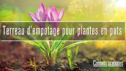 Terreau d'empotage pour plantes en pots - image 1 from the video