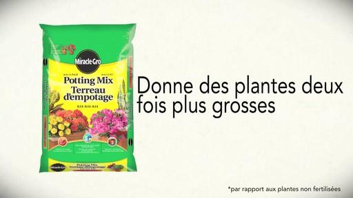 Terreau d'empotage pour plantes en pots - image 10 from the video