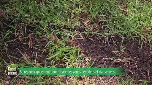 Ensemencement de la pelouse avec Frankie Flowers - image 2 from the video