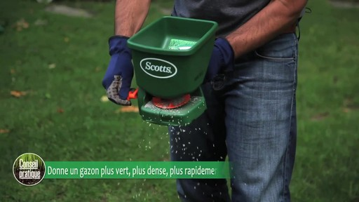Ensemencement de la pelouse avec Frankie Flowers - image 6 from the video