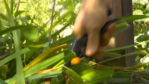 Sécateur à contre-lame Fiskars de professionnel - Témoignage d'Éric  - image 9 from the video